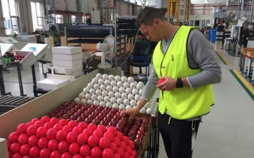 Peter Siddle checking out the balls at the Kookaburra ball factory in Melbourne